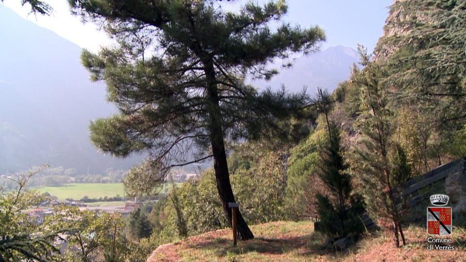 Arboretum Verres