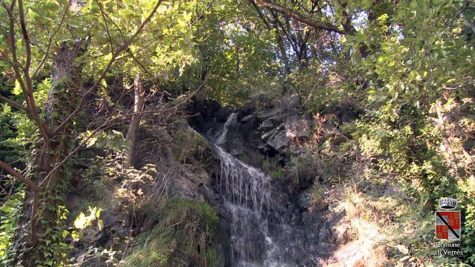 """Arboretum """"Borna du laou"""""""